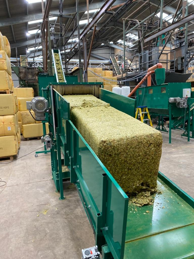 Brook House hops going in to the pellet mill to be transformed into pellets